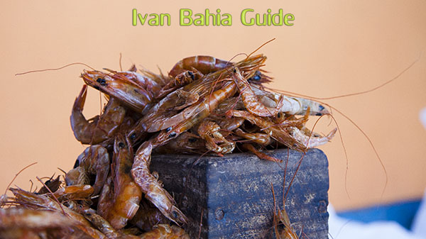 Typical dry shrimp on a market in Salvador da Bahia - with Ivan's Salvador da Bahia & Chapada Diamantiana national park's official tour guide