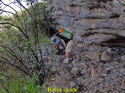 les plantkunde van Trajano, fotos Chapada Diamantina nationaal park, wandelingen & trekking met vlaamse reis-gids Ivan (die al 10 jaar in Bahia woont) voor uw rond-reis met begeleiding in het Nederlands in Brazilië